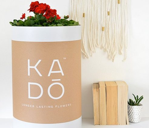 kado packaging